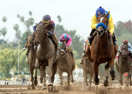 Vale Dori and jockey Mike Smith, right, outleg Show Stealer (Tyler Baze), left, to win the Grade II, $200,000 Santa Maria Stakes, Saturday, February 11, 2017 at Santa Anita Park, Arcadia CA.