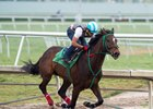 Three Rules works with Luis Saez aboard