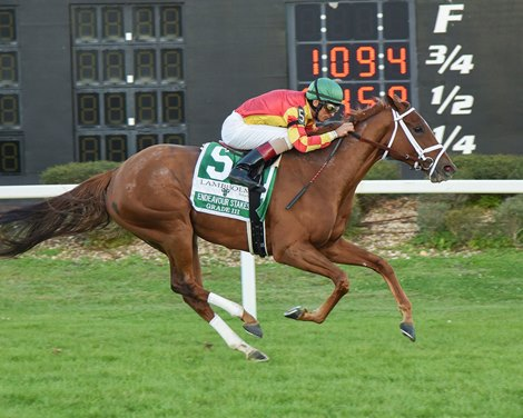 Isabella Sings Goes Gate To Wire In Endeavour Bloodhorse