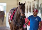 Tepin walks the shedrow Feb. 1 at Palm Meadows