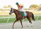 Isabella Sings after winning the Feb. 11 Lambholm South Endeavour Stakes (G3T) at Tampa Bay Downs