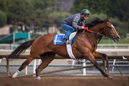 Gormley worked 4 furlongs in :49.60 at Santa Anita on Feb. 2