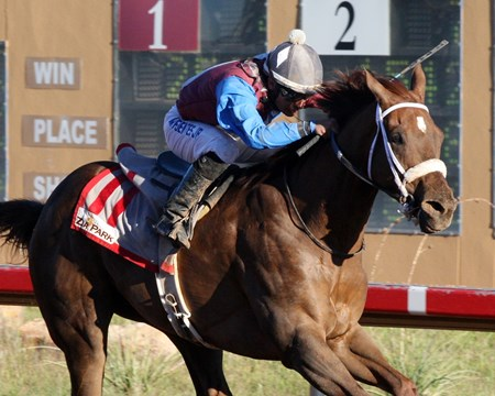 Mr. Wizard wins the 2015 Rocky Gulch New Mexico Classic Cup Championship