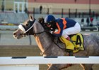 El Areeb draws clear under a hand ride in the Feb. 4 Withers