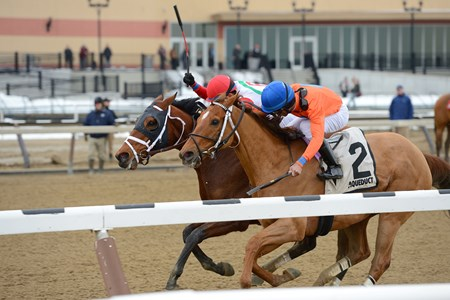 Send It In wins the 2017 Haynesfield Stakes
