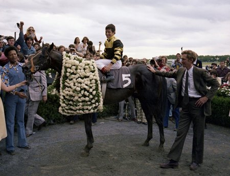 Seattle Slew in the Winner's Circle after the 1977 Belmont Stakes