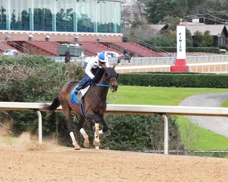 Lookin at Lee - Oaklawn Park - Feb. 13, 2017
