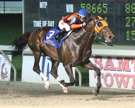 Mobile Bay wins the LA Bred Premier Night Championship Stakes in February