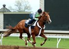 Frammento worked a half-mile April 16 at Keeneland.