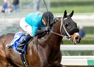 St. Joe Bay is looking for his first score since the 2017 Palos Verdes Stakes at Santa Anita