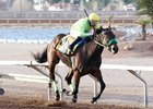 Undefeated Conquest Mo Money wins the Feb. 26 Mine That Bird at Sunland Park