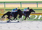 Epicharis Earns Japan's Kentucky Derby Bid