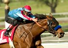 Da Stoops winning the 2006 Sunshine Millions Dash Stakes