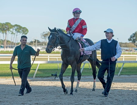 McCraken with Brian j Hernandez win The Sam F Davis Stakes @ Tampa Bay Down  Feb 11 2017