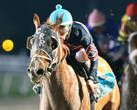Underpressure wins the 2017 LA Bred Premier Night Prince