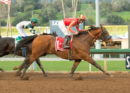 Hoppertunity wins the 2017 San Antonio Stakes