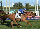 Almanaar comes running late to win the Gulfstream Park Turf Handicap
