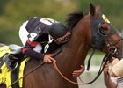Ghostzapper also won the 2004 Woodward Stakes, earning affection from jockey Javier Castellano.