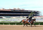 Youngsters gallop in preparation for the Barretts spring sale at Del Mar