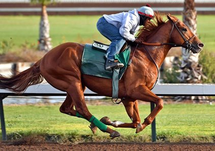 Dortmund works at Los Alamitos Race Course March 5