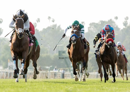 Conquest Farenheit wins the 2017 Pasadena Stakes