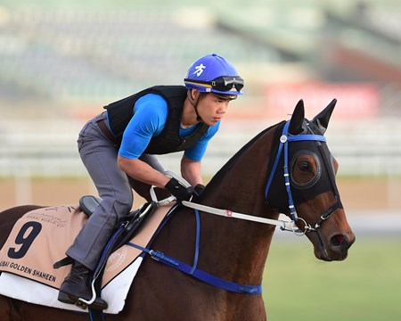 Dundonnell - Meydan - March 20, 2017