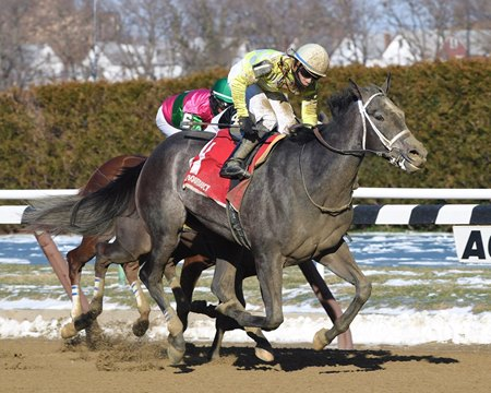 Sunny Ridge takes the March 12 Stymie over longshot Doyouknowsomething