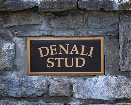 sign on stone pillar entrance Scenes at Denali Stud near Paris, Ky., on March 2, 2017, include farm manager Gary Bush with Keertana and her 2017 War Front colt, plus Animal Kingdom memorabilia.