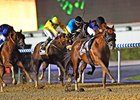 Mind Your Biscuits rolls to victory in the Dubai Golden Shaheen