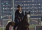 Arrogate training at Meydan in Dubai March 23