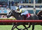 A determined Dream Dancer gets the victory in the Herecomesthebride