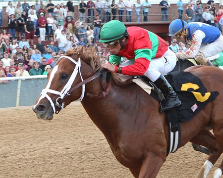 Malagacy jumped into the Kentucky Derby picture with his Rebel victory