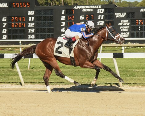 Stanford To Enter Stud At Tommy Town Thoroughbreds