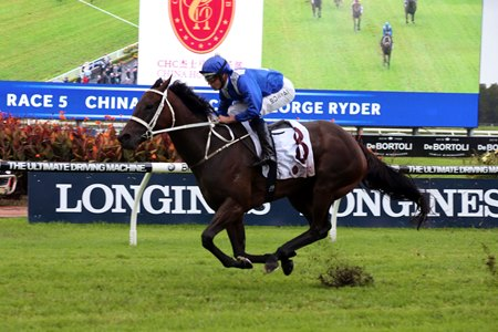 Winx opened up on the field in the stretch to capture the George Ryder Stakes