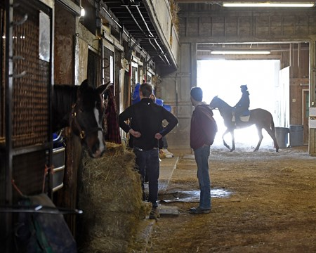 activity in the barn Hands on training for NARA students at the Lexington Thoroughbred Center in Lexington, Ky., on March 9, 2017.  Staff include Remi Bellocq, Dixie Hayes (program coordinator),  Alicia Benben (Academic Coordinator/Instructor), Nicole Carlson (former student, now barn manager).