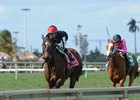 Celestine, Suffused Flaunt Class Over Gulfstream Turf