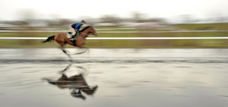 A horse works over a flooded training track at Keeneland.