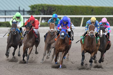 Who's the Lady wins the 2017 Any Limit Stakes