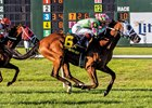 Maker Trio Heads Muniz Memorial Handicap