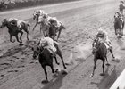 Searching wins the 1956 Top Flight Handicap at Belmont Park with Conn McCreary up, Parlo second, Rico Reto third.