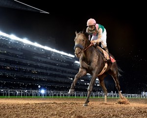 Arrogate flies from last to a 2 1/4-length victory in the Dubai World Cup