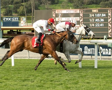 Calculator - AOC, Santa Anita, March 2, 2017
