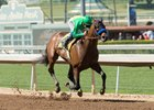 Mastery draws off to win the San Felipe Stakes at Santa Anita Park