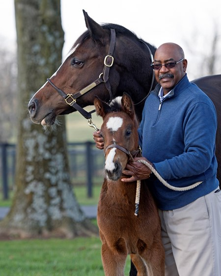 Bush with Keertana and foal. Scenes at Denali Stud near Paris, Ky., on March 2, 2017, include farm manager Gary Bush with Keertana and her 2017 War Front colt, plus Animal Kingdom memorabilia.
