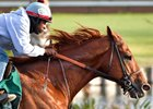 Dortmund trains at Los Alamitos in March