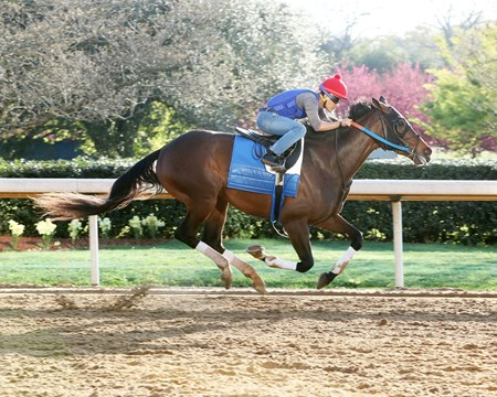 Lookin at Lee - Oaklawn, March 9, 2017