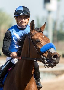 Goodyearforroses after her win in the Santa Ana Stakes in March at Santa Anita
