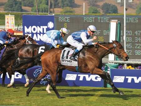 Goldikova with Olivier Peslier wins the 2009 Breeders' Cup Mile.