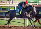 Arrogate works at Santa Anita March 12