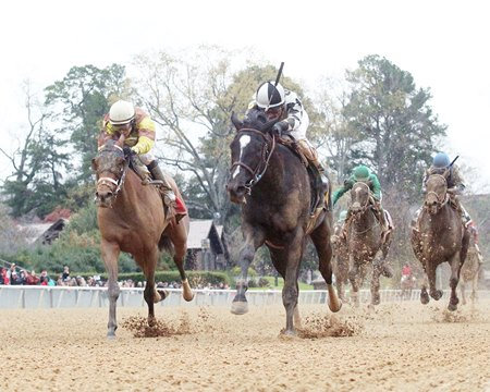 It Tiz Well (inside) fights on gamely to win the Honeybee Stakes